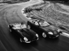 Jaguar_07